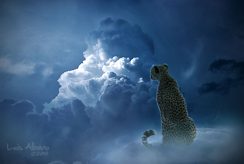 Over the Clouds 46 by Miztliyuma