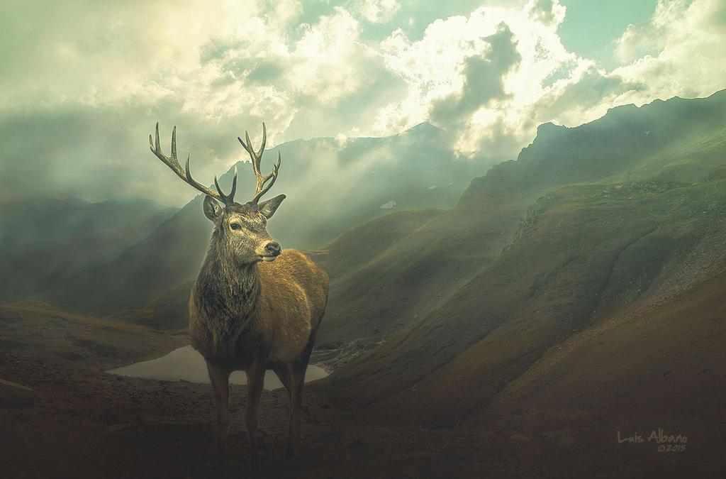 Mountains by Miztliyuma