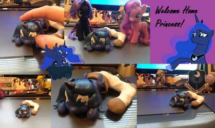 Welcome Home Princess! by ChosenKaze