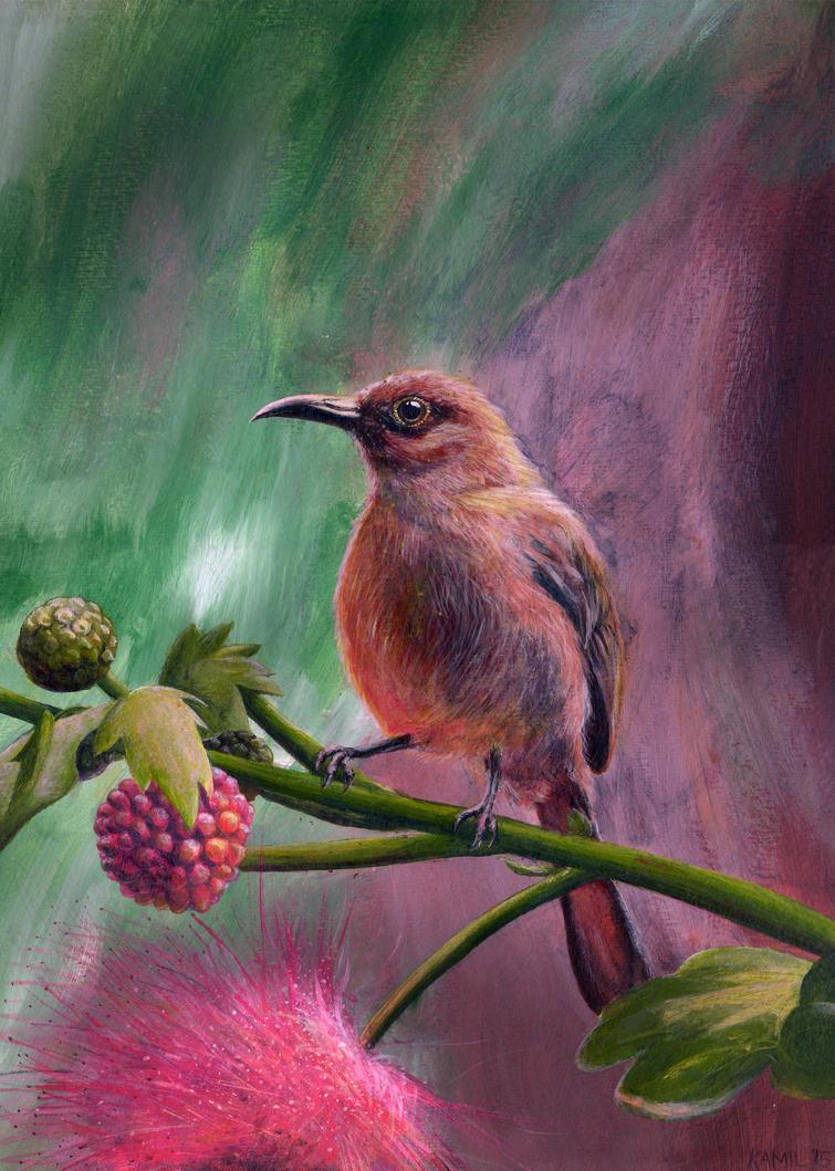 Bird-2 by PabloSantiago