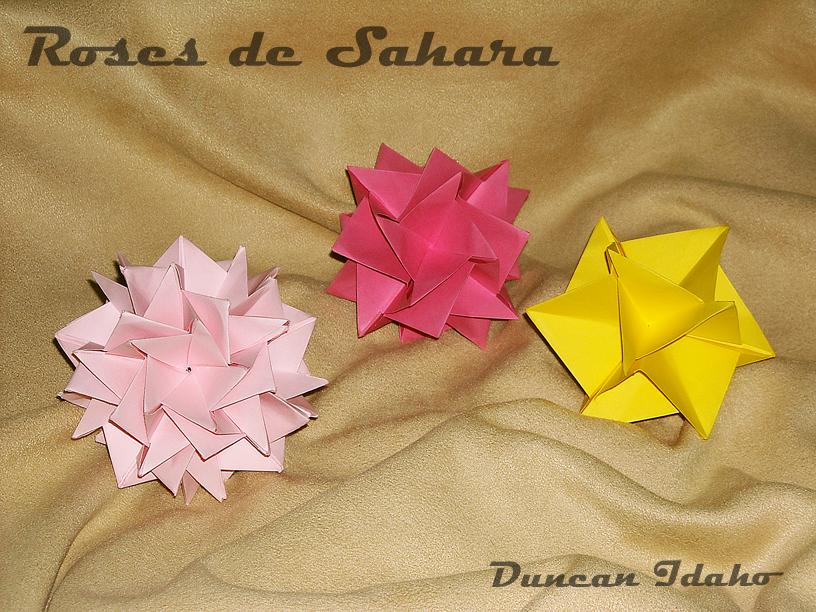 Roses de Sahara