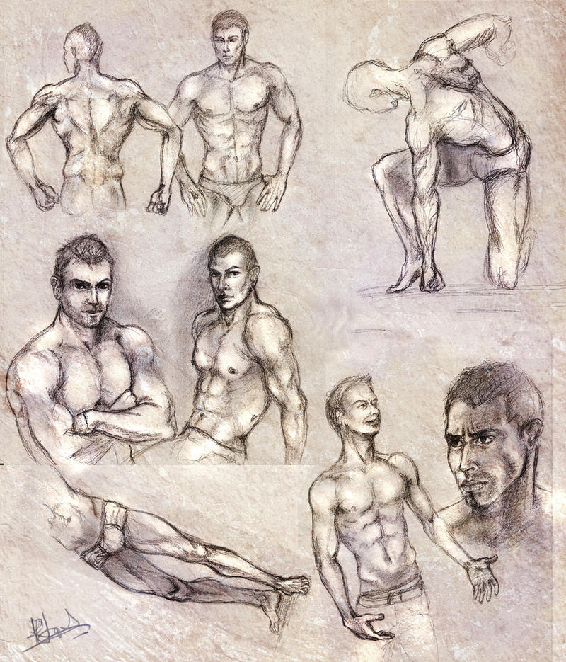 Male anatomy sketches by RuxandraLache on DeviantArt