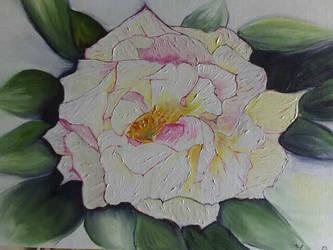 Rosa by MariaBertrlli