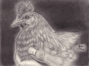 R.I.P Hashbrowns the Bipolar Chicken by Humdeedum233