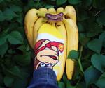 Dk socks and his banana horde by Humdeedum233