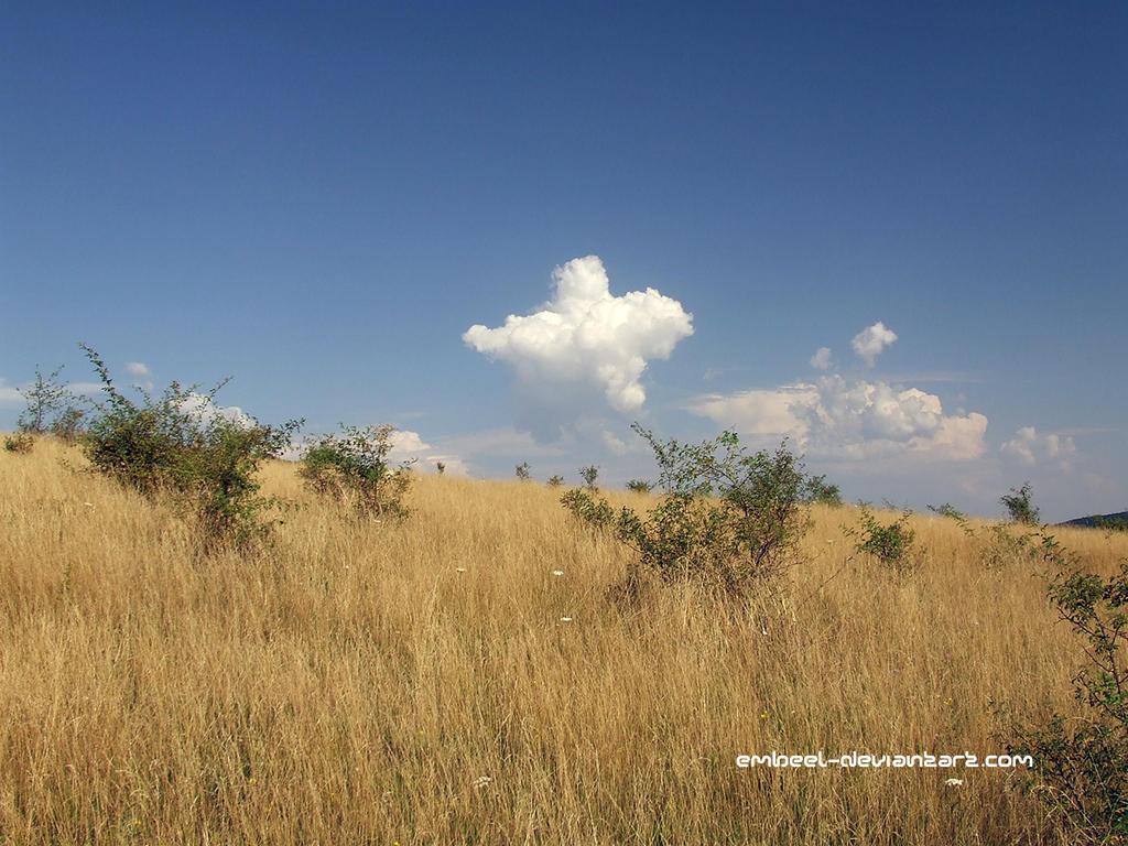 The Michelin Cloud by eMBeeL