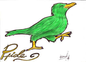 Little green crow.