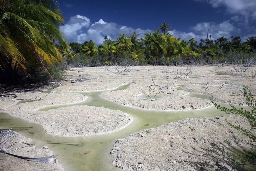 atol scenery by kafik