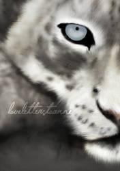 snow leopard - wip