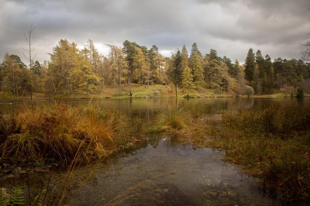 Autumn Walks 4 by RaeyenIrael-Stock