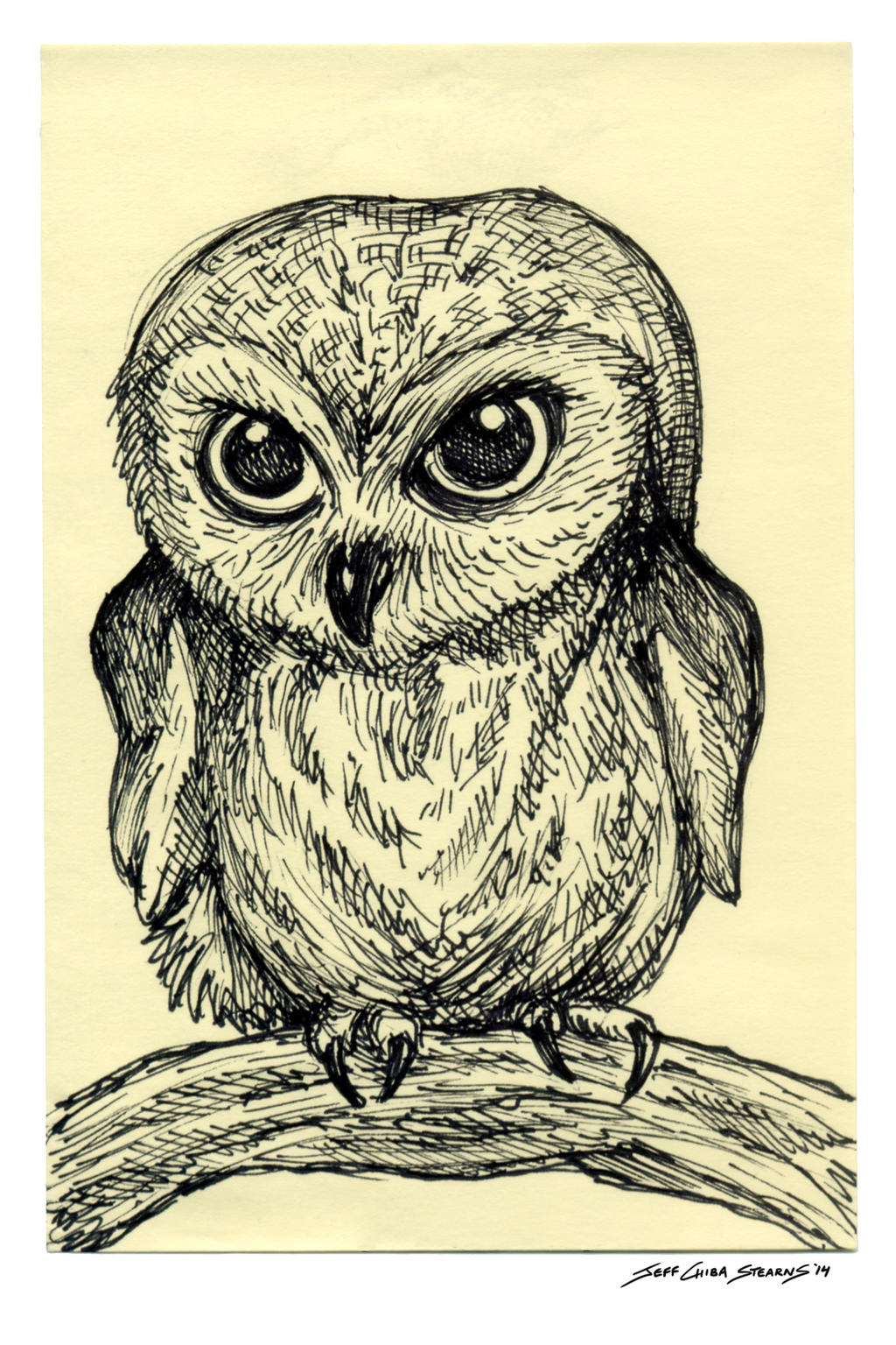 how to draw a baby owl