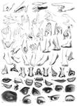 Anatomy Practice by sugapiessofly