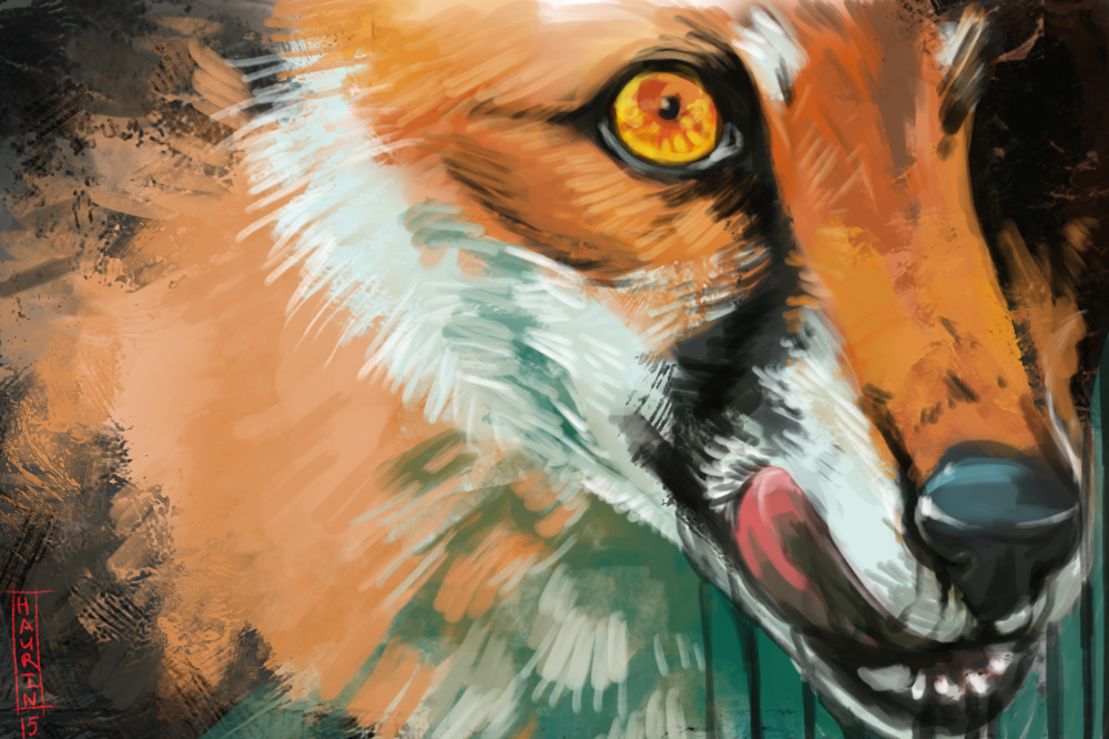 fox 8 dating in the dark Norddjurs