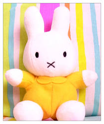 Miffy Photo 01
