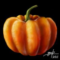 Pumpkin by Maxor-GWD