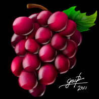 Grapes by Maxor-GWD