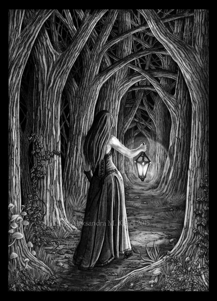 Land of Shadows by Doberlady