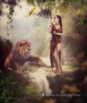 jungle...
