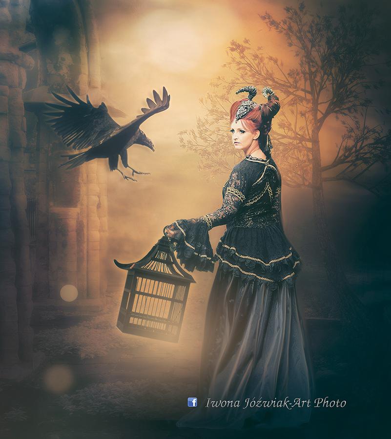 crow... by mirandaarts