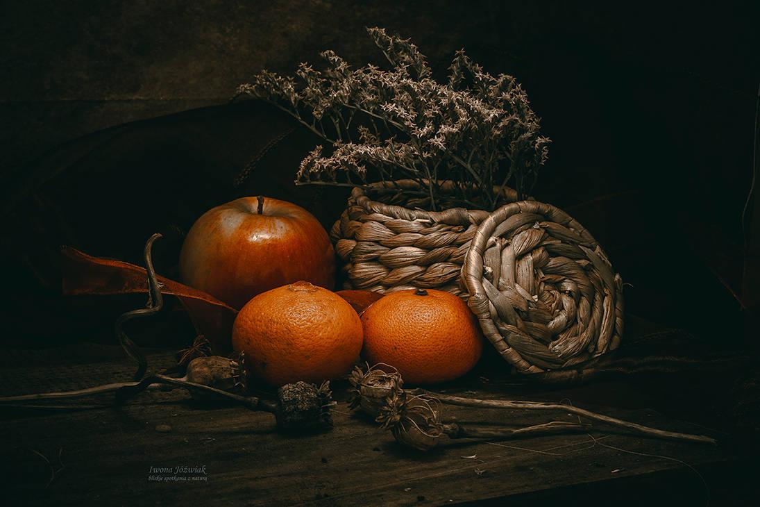 fructis... by mirandaarts