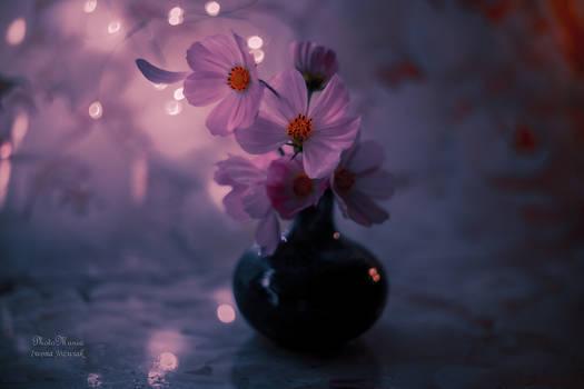 pink flower...