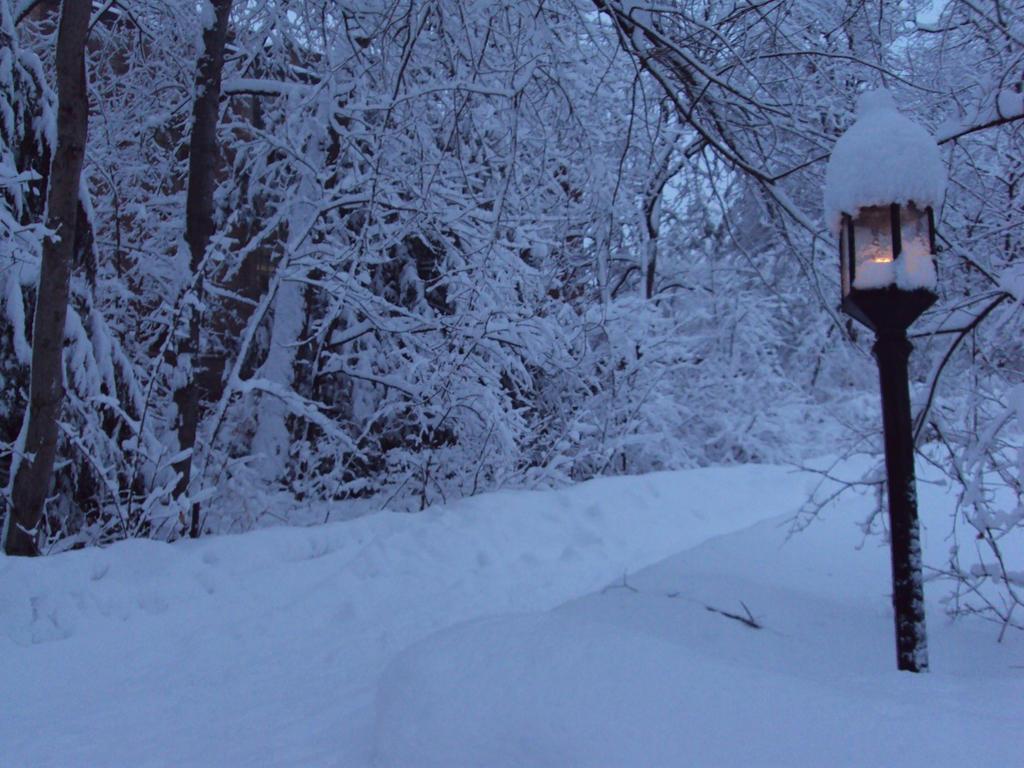 stock, narnian lamppost