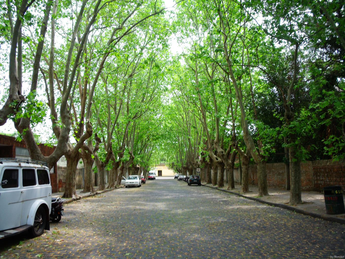 Calle Bonita - Uruguay by bbmbbf