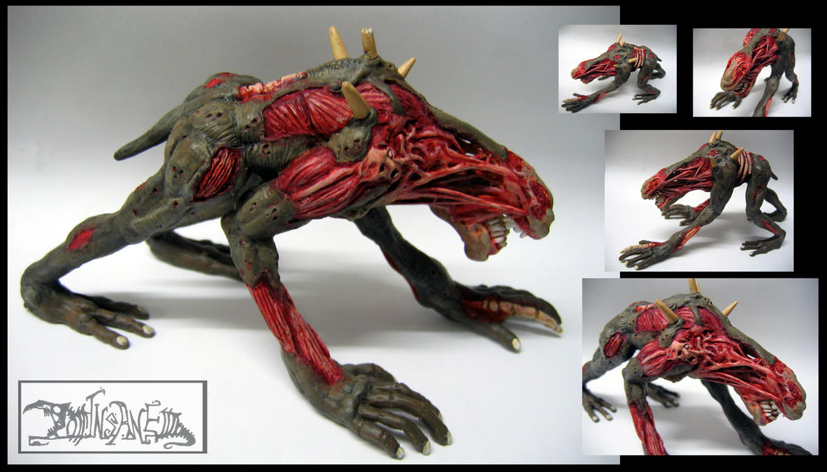 Carcass by polawat