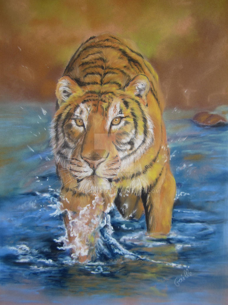 Tiger in water by Aspi-Galou