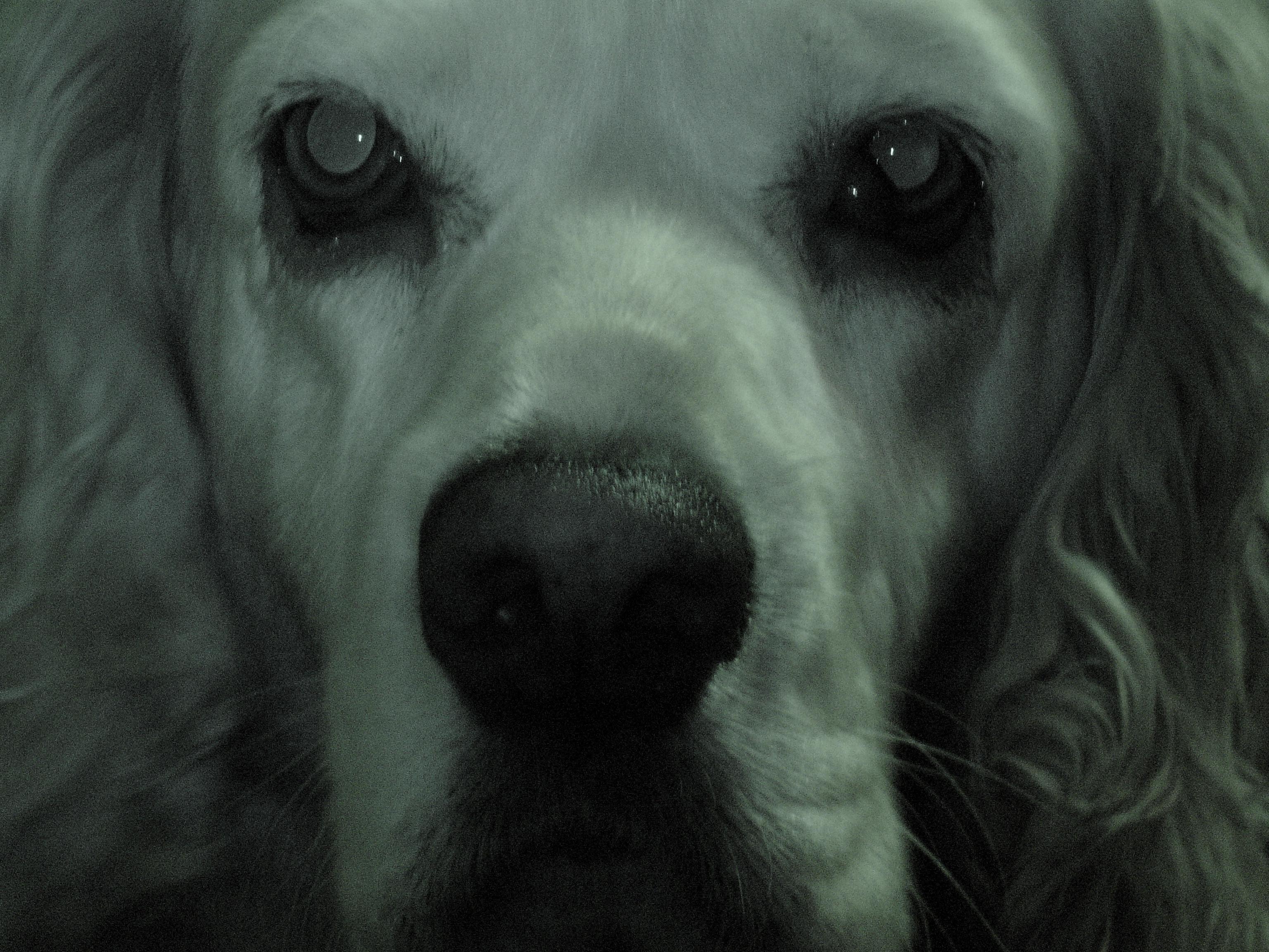 yozgt's Profile Picture