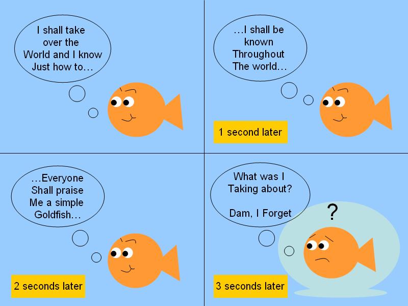 Forgetful Fish By Zack0001 On Deviantart