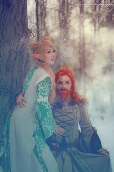 Elven and Dwarven nobles