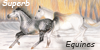 Superb Equines avatar entry by Liaram