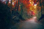 Heaven Road by Dye-Evolve