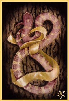 snake and the ribbon