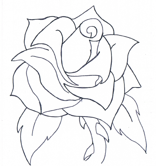 Line Drawing Of A Rose : The gallery for gt old school rose drawing