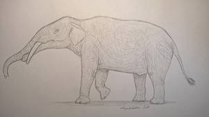 Megabelodon