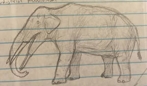 Doodle Gomphothere 2