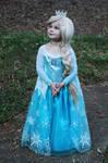 Queen Elsa Cosplay XD