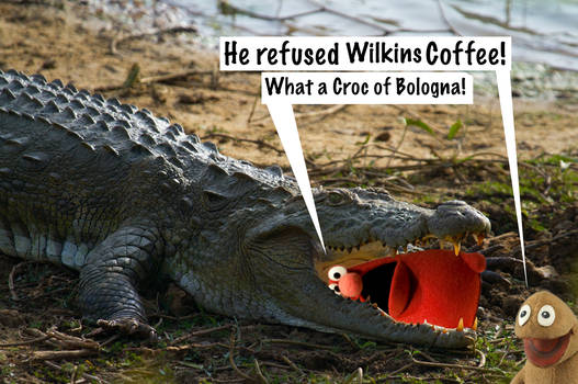 Wilkins and Wontkins Crocodile!