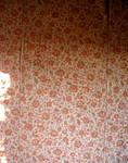 S.S. Wallpaper - 3