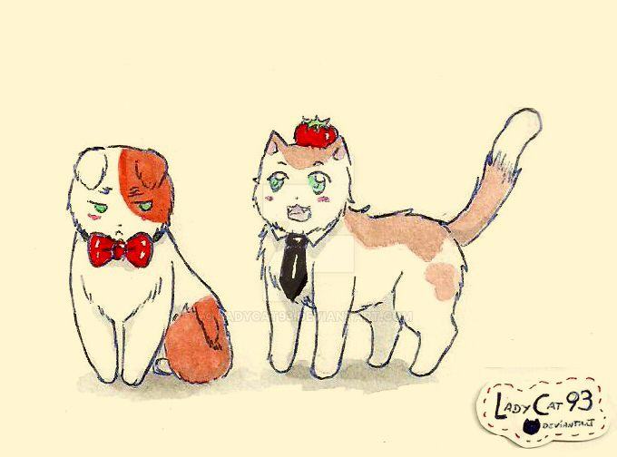 Neko! UKSpain 12/09 by ladycat93