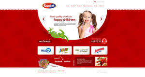 Saadet Gida Web Design