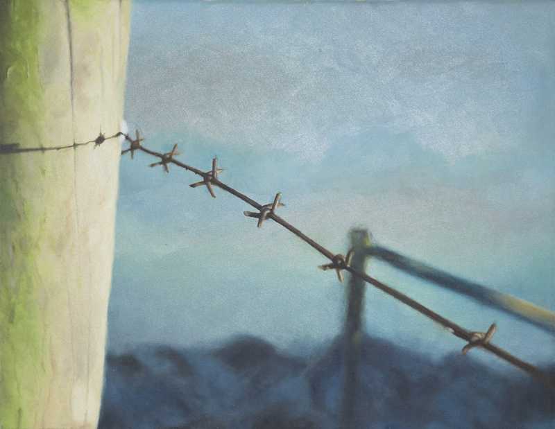 Painted Barbed Wire - WIRE Center •