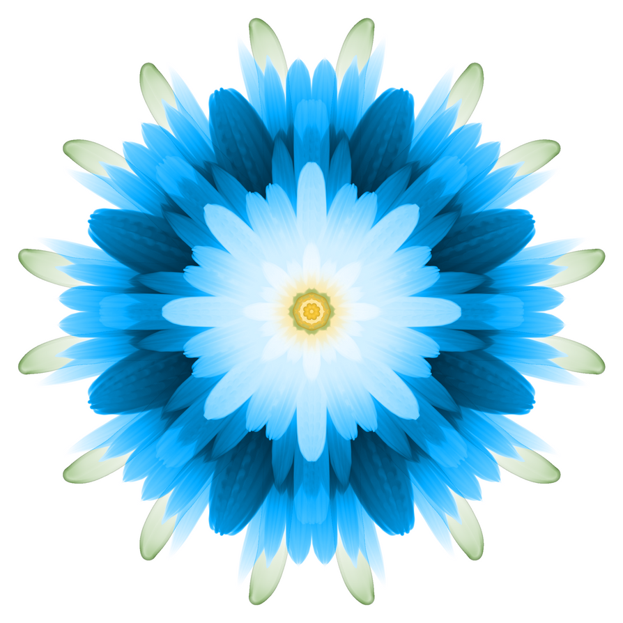 Symmetry Flower 2 2000x2000 by WerewolfPuppy
