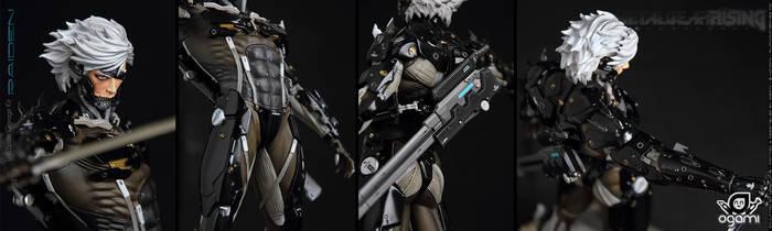 Raiden Metal Gear Rising 02
