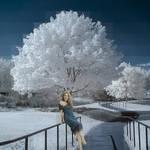 Photomontage Amy Adams