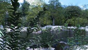 Placid Lake 2