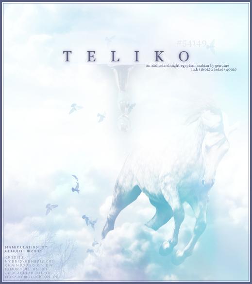 teliko by alahasta-design