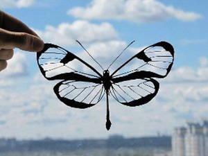 Butterfly Handmade Original Papercut